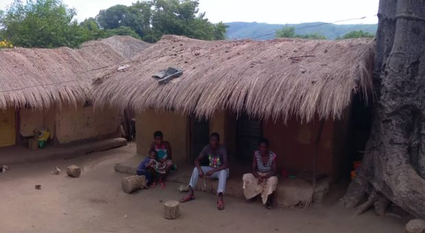 Quintal do Sr. Xavier. À direita, um Baobá, lá conhecido como Embondeiro, muito comum na região e que é integrado às casas como uma espécie de muro.